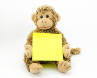 Scimmia con il blocco note Fotografie Stock Libere da Diritti