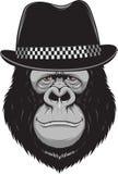 Scimmia con un cappello Immagine Stock Libera da Diritti