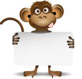 Scimmia con un fondo bianco Fotografia Stock