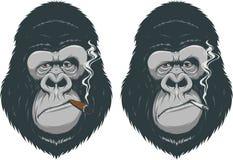 Scimmia con una sigaretta illustrazione di stock