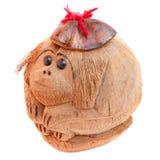 Scimmia da una noce di cocco Fotografia Stock Libera da Diritti