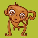 Scimmia del bambino Immagine Stock