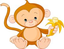 Scimmia del bambino che mangia banana Fotografie Stock