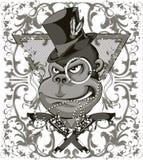 Scimmia del bandito illustrazione di stock
