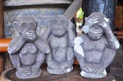 scimmia dell'albero Fotografie Stock Libere da Diritti