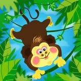 Scimmia di Miki, scimmia, estate, divertimento, entusiasmo, tomfoolery fra le viti, volanti nella giungla illustrazione di stock