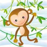 Scimmia divertente Fotografia Stock