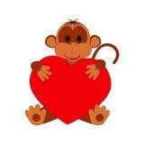 Scimmia divertente che tiene un cuore su un fondo bianco Fotografia Stock