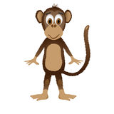 Scimmia isolata su priorità bassa bianca Fotografia Stock
