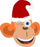 Scimmia sorridente di Natale Fotografia Stock Libera da Diritti