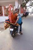 Scimmia su una motocicletta Immagini Stock