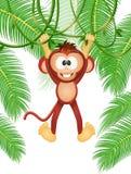 Scimmia sulle liane royalty illustrazione gratis