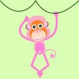 Scimmia sveglia Fotografie Stock Libere da Diritti
