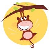 Scimmia sveglia del Brown che pende dall'albero Immagine Stock Libera da Diritti