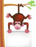 Scimmia sveglia e segno in bianco Immagini Stock Libere da Diritti