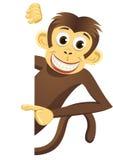 Scimmia sveglia e spazio in bianco bianco Fotografie Stock Libere da Diritti