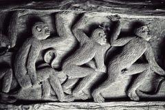 Scimmia tre immagine stock