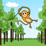 Scimmia in una giungla Fotografia Stock
