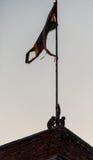 Scimmie che giocano davanti alla bandiera indiana Immagini Stock