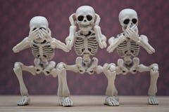 Scimmie saggie dello scheletro 3 Fotografia Stock Libera da Diritti