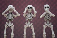 Scimmie saggie dello scheletro 3 Immagine Stock