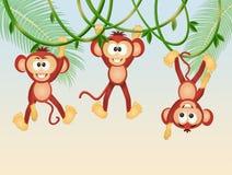 Scimmie sulle liane nella giungla royalty illustrazione gratis
