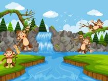 Scimmie sveglie nella scena della giungla illustrazione di stock