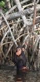 scimpanzè Fotografie Stock Libere da Diritti