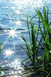 Scintilla dell'indicatore luminoso di Sun sull'onda immagini stock libere da diritti