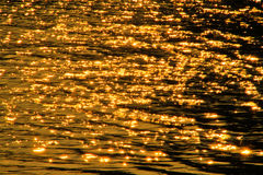Scintillate sunlight,. In the river background Stock Photography
