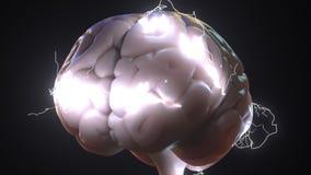 Scintille sopra cervello umano Idee o rappresentazione concettuale relativa 3D di lampo di genio Immagine Stock