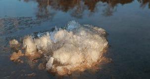 Sciolga e un pezzo di ghiaccio nell'acqua video d archivio