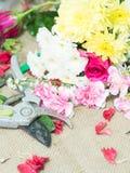 Scissor på tabellen av blommaordningen Royaltyfri Bild