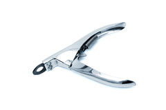 Scissors for claws Royalty Free Stock Image