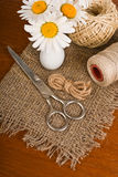 Scissors, cord and daisy flower in vase Royalty Free Stock Photo