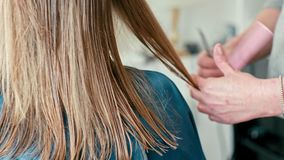 Scissors cut female wet straight hair. Hairdresser makes haircut in barbershop. Close up of scissors cutting female client`s wet straight hair. Hairdresser makes stock footage