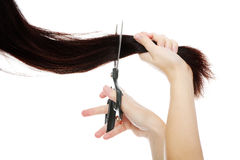 Scissors cutting hair. Against white background Royalty Free Stock Photo