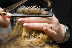 Scissors cutting hair Stock Photography