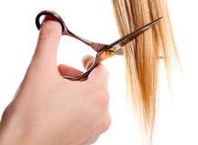 Scissors cutting lock of hair Royalty Free Stock Images