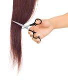 Scissors cutting lock of hair Stock Images