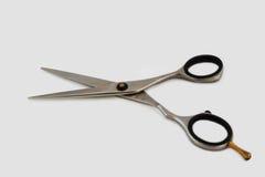 Scissors 18/10 de aço inoxidável isolado no fundo branco Imagem de Stock