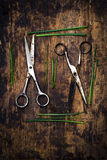 Scissors and herbs. Village life in spring. Farm tools Stock Photos