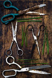Scissors and herbs. Village life in spring. Farm tools Stock Images
