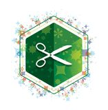 Scissors icon floral plants pattern green hexagon button stock illustration