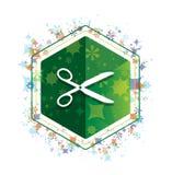 Scissors icon floral plants pattern green hexagon button stock illustration