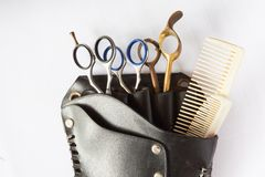 Scissors Set in Leather Case Stock Photography