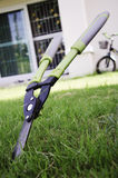 Scissors to cut the grass. Scissors cut the grass in the background Royalty Free Stock Image