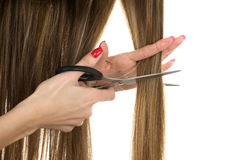 Scissors trying to cut long hair Stock Images