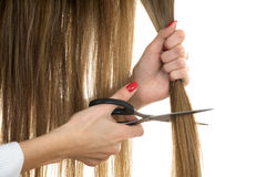 Scissors trying to cut long hair Stock Photo