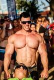 Scitec mięśnia plaża Zdjęcia Royalty Free